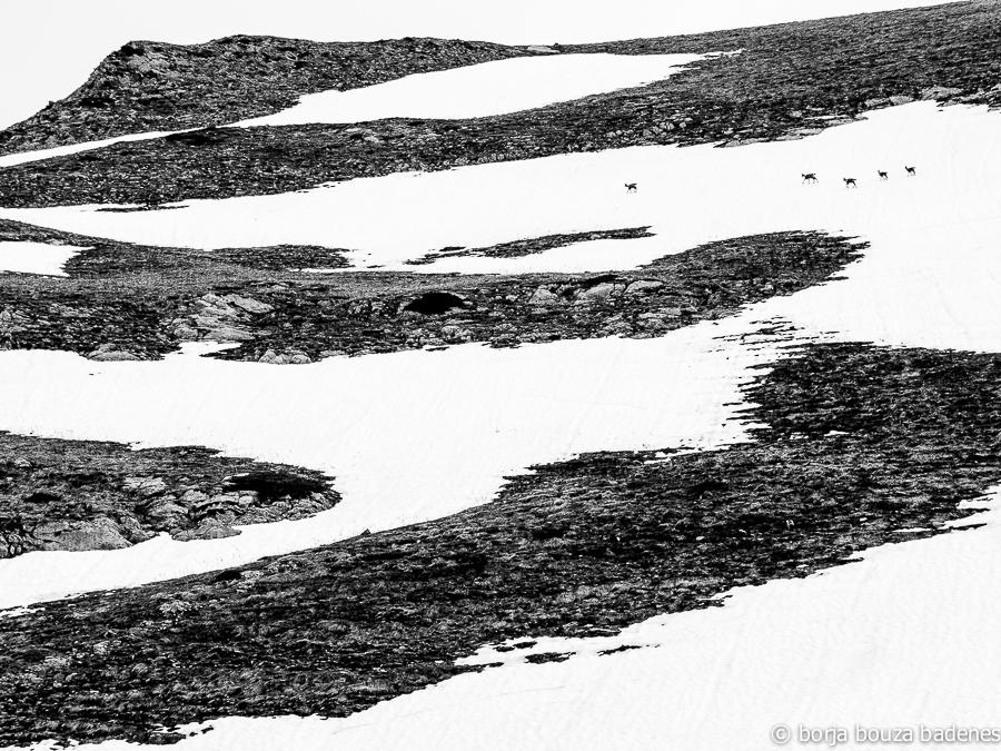 Salida fotográfica valle de estós