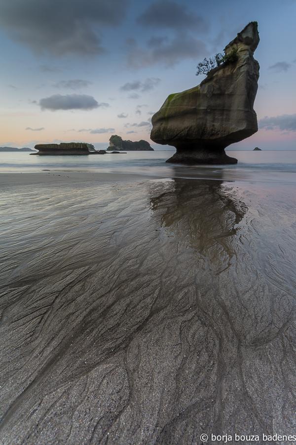 Viaje fotográfico nueva zelanda isla norte